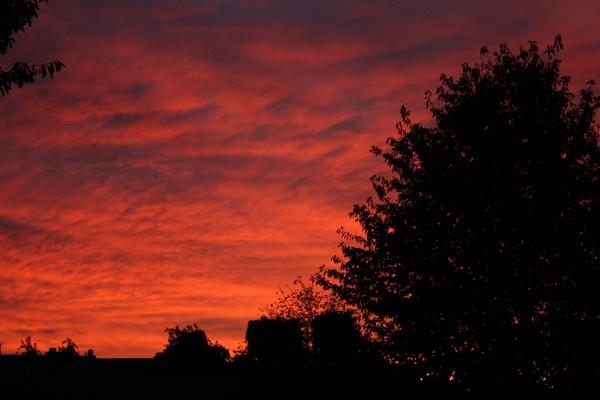 Red Sky by 1Wizzard1
