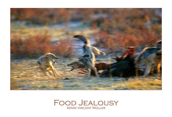 Food Jealousy by MarkVMueller