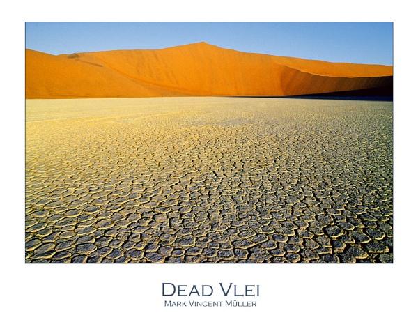 Dead Vlei by MarkVMueller