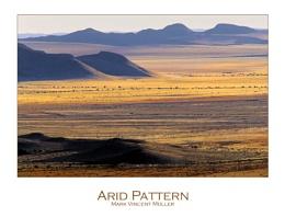 Arid Pattern