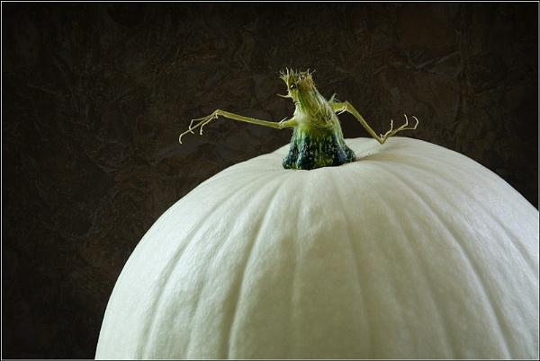 Pumpkin Desert by BlueRoom