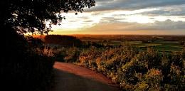 Evening light over Wiltshire