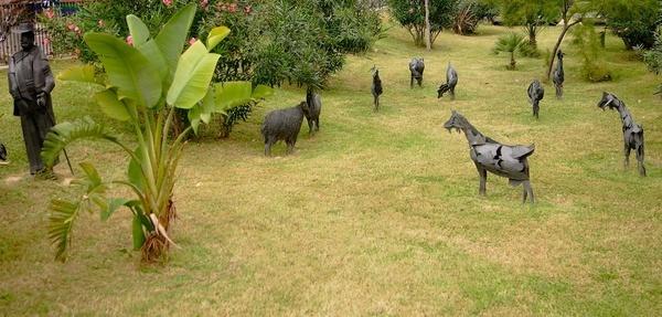 benidorm goat herd by ardclinis