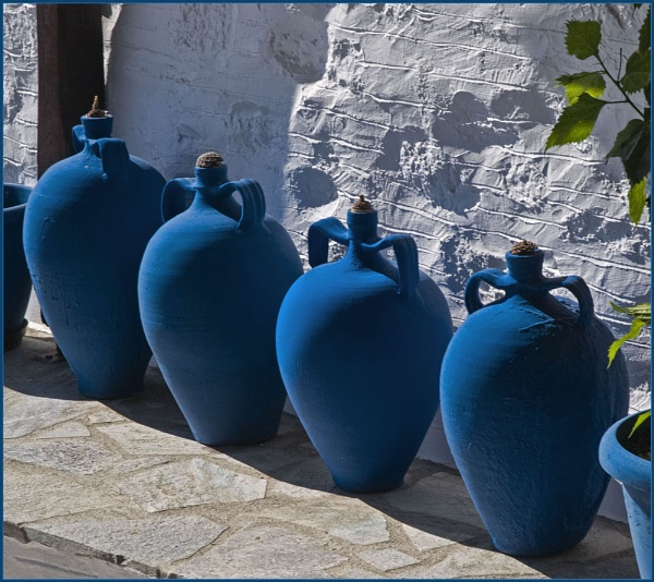Bluebottles by Cormy
