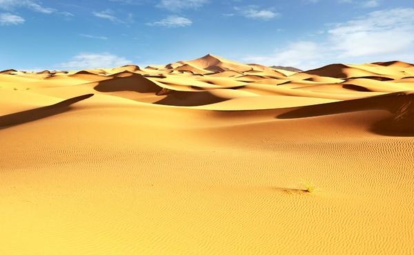 Sand dunes by tomaszchrulski