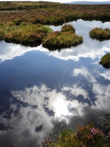 Reflective tarn by snaphotos