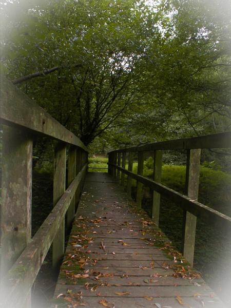 Autumn Bridge by paulmeyer