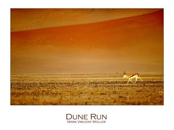 Dune Run by MarkVMueller