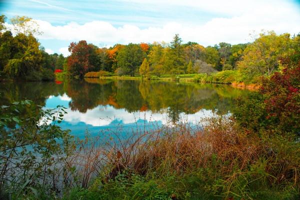 Morton Arboretum Chicago by ShotfromaCanon