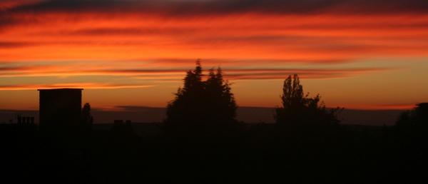 SUN OUTSIDE MY WINDOW by curt