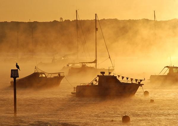 magical misty morn by Gazzten