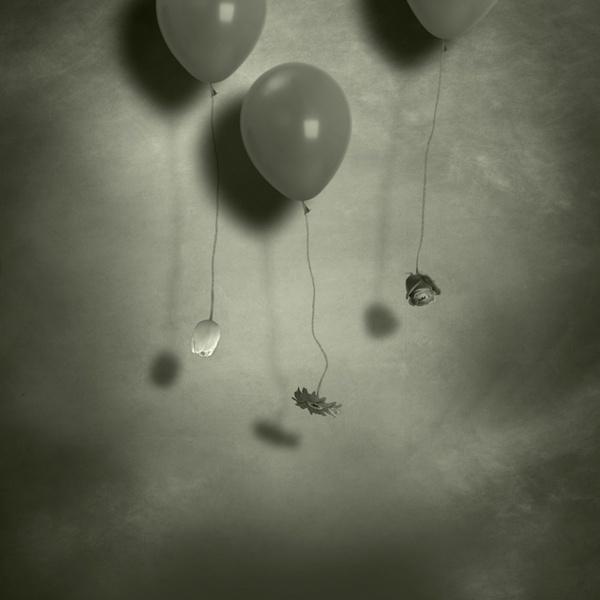 Dream scraps VI. - Spring by ambrits