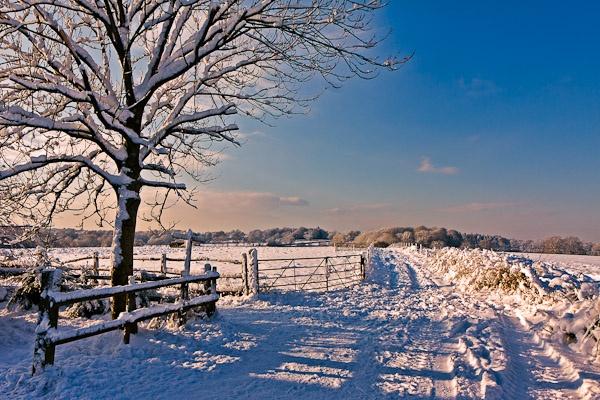 Winter scene near East Grinstead by Phil_Bird