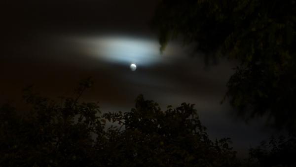 Moon Glow by seaviewlou