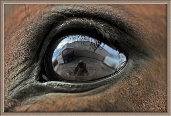 eye eye by Richard_OSullivan