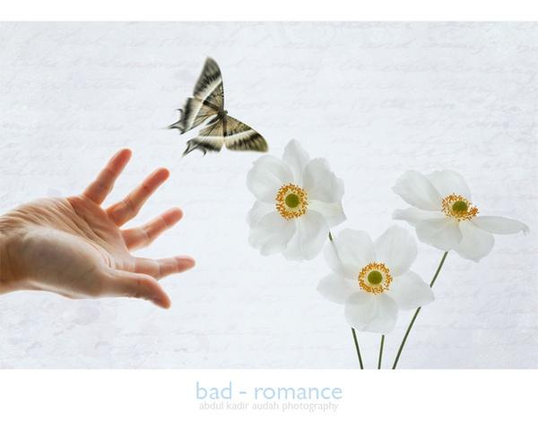 Bad Romance by ading