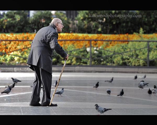 Chasing Pigeons... by woodlark