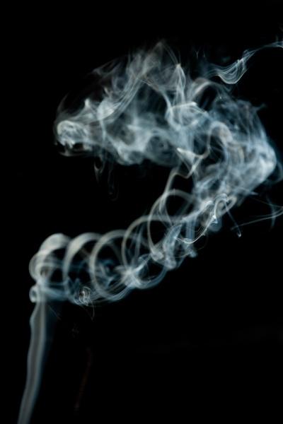 smoking by burd