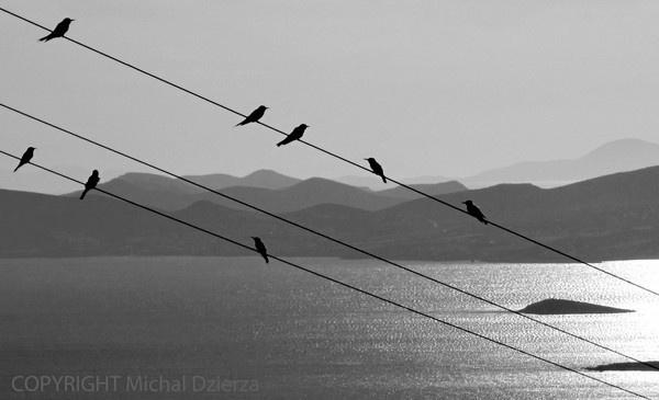 A fine line by MichalD