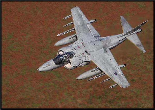RAF Harrier by John_Wannop