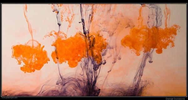 Orange Explosions by martin.w