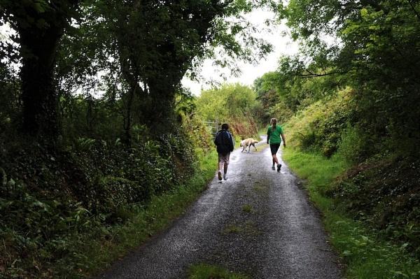 Another Walk by John_Humphreys