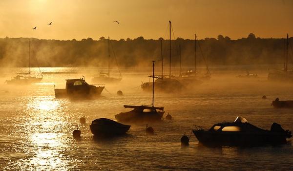another misty morn by Gazzten