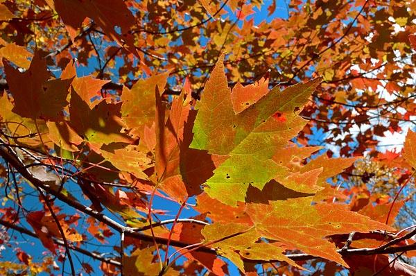 Oktober Sky by fotoboy