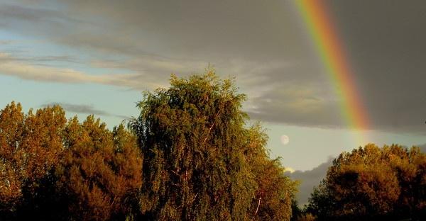 Autumn Rainbow by hughsey