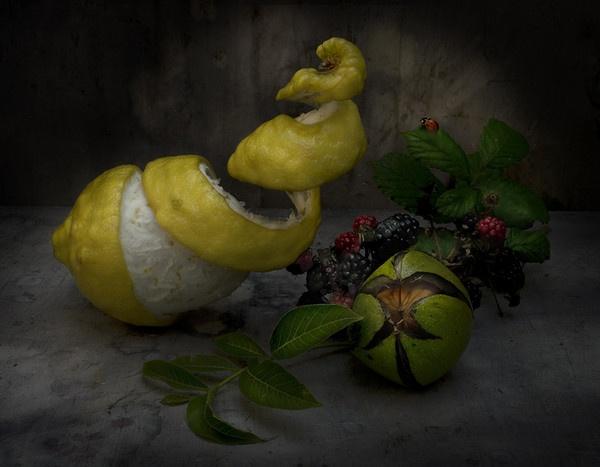 Lemon and Walnut by GARYHICKIN
