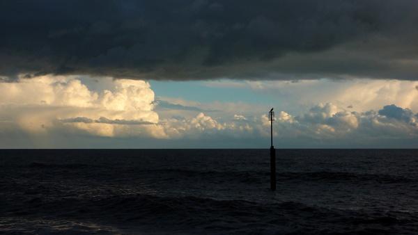 Resting Cormorant by seaviewlou
