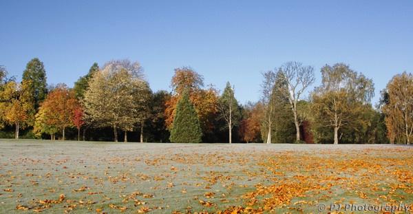 Aberdare Park by PaulJenkins