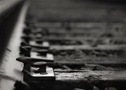 The Misty Morning Rails