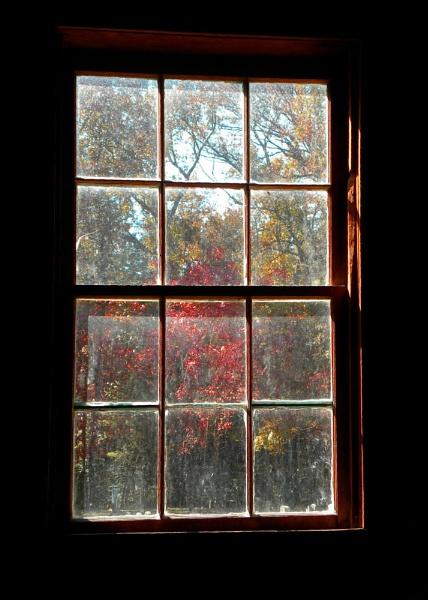 WINDOW . . . by PattiW