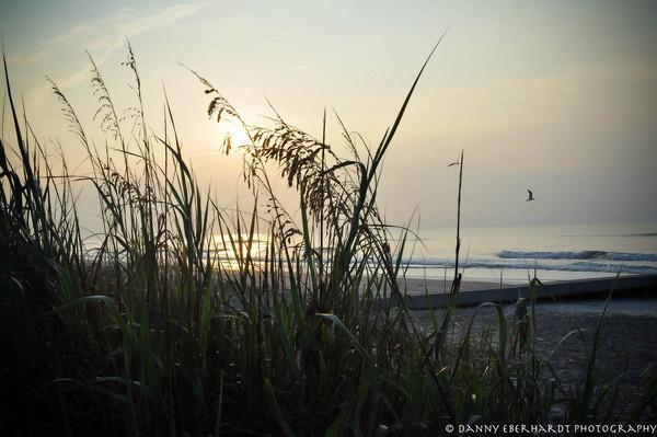 Folly Beach SC by Drippingsoul13