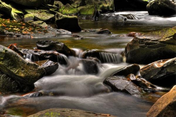 Bracken Falls by sandyd