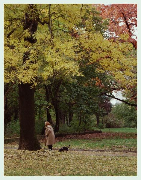 Autumn by pj12