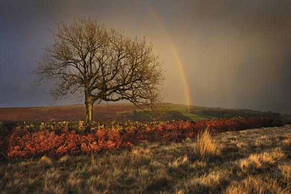 Drama on the moors! by iansnowdon
