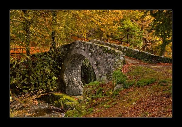 Bridge to Autumn by Porthos