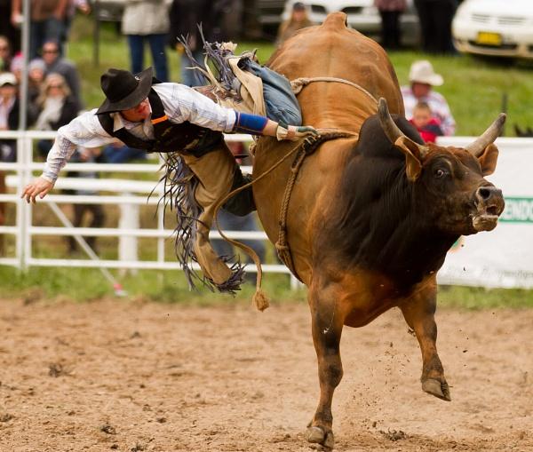 Rodeo VI by steve_evans