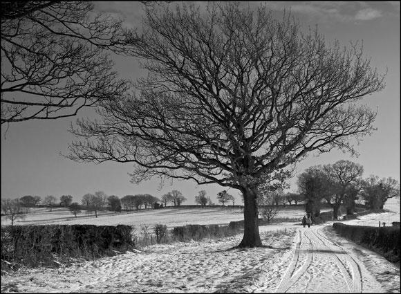 Walki in the snow by david hunt