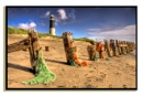 Spurn Vista by Briwooly