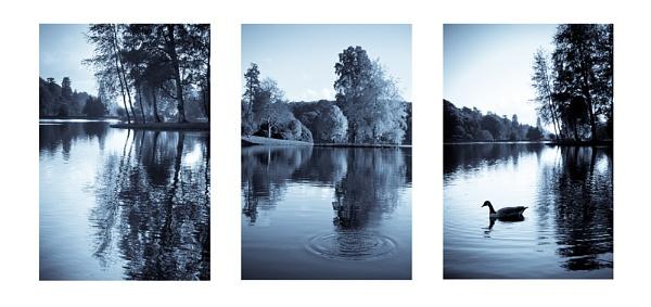 lakeside blues by blackbird
