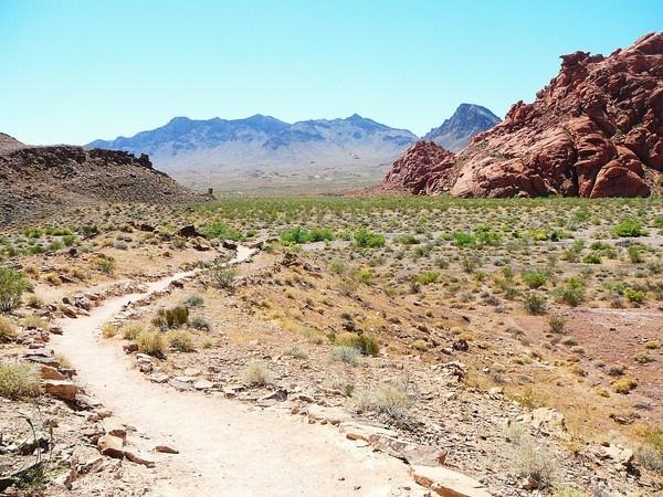 red rock canyon vista by artcubis