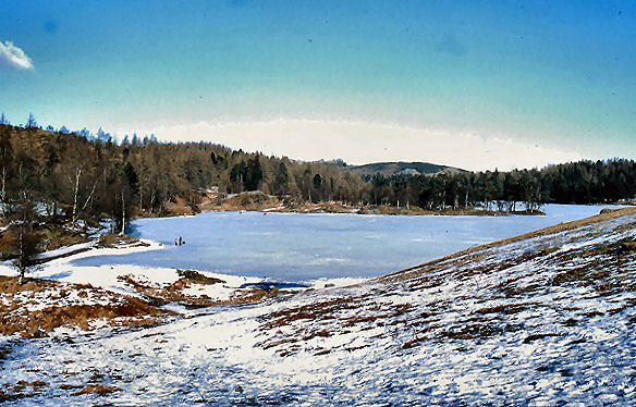 Tarn Hows by donald.foster