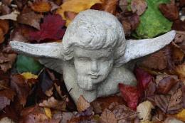 Angels & Leaves