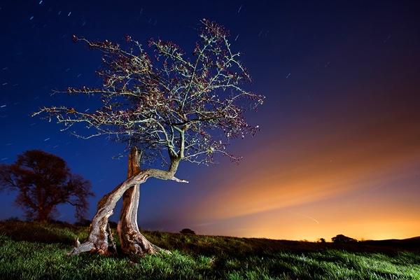 Hawthorn Hill by IRaddict