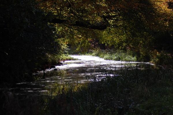 Canal Walk by Bearspirit29