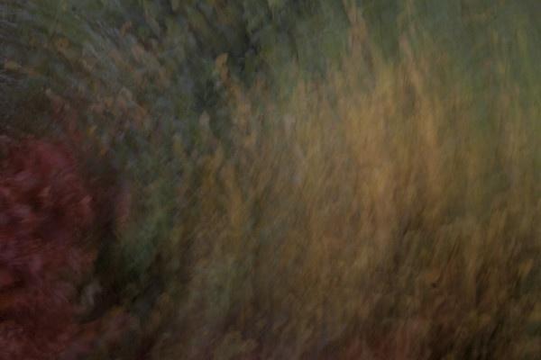 Autumn Blur by mark_wood