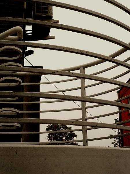 Metalic curves by Chinga